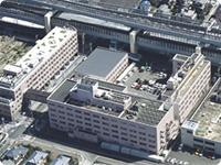 十字 病院 白